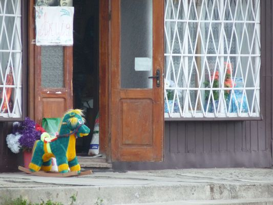 a horse outside a shop in Ukraine