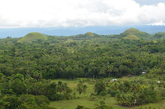 view of Carmen Chocolate Hills in Bohol