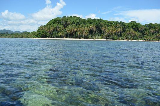 Snorkeling and hiking Cahuita National Park