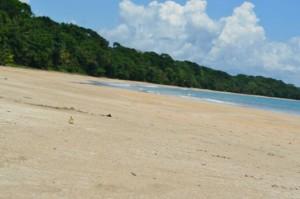 Manzanillo beach