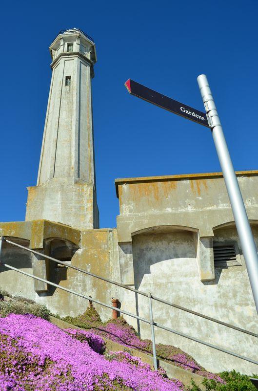 Alcatraz Island Prison Prison On The Rock