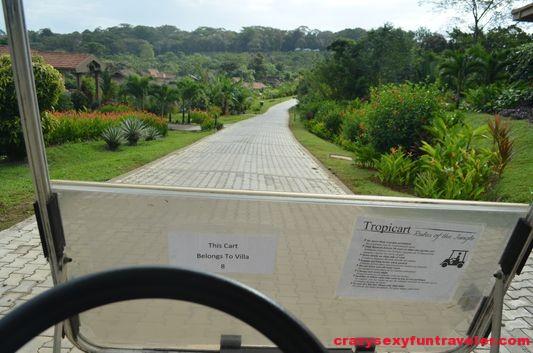 driving golf cart amond the Red Frog Beach villas