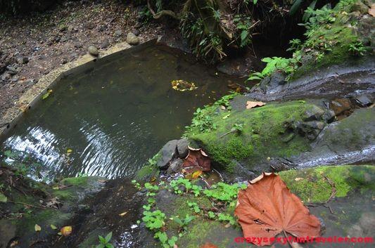 Samasati Nature Retreat Costa Rica (44)