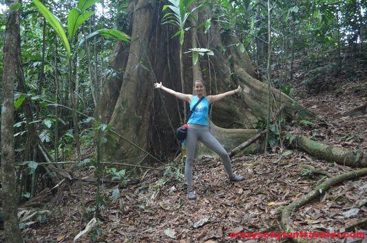 Samasati Nature Retreat Costa Rica (45)