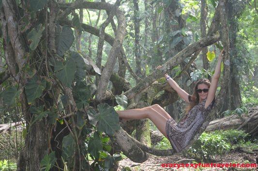 living in the jungle in Costa Rica