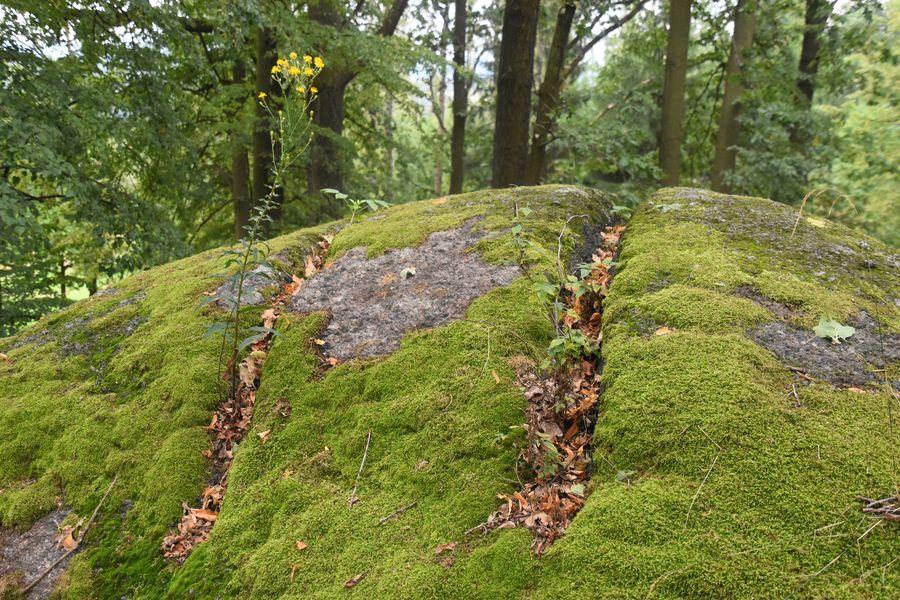 Pohanske kamene zarezy od certovho kociara