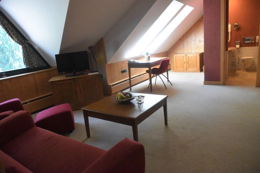 obyvacia izba v apartmane adult friendly hotel Tri Studnicky