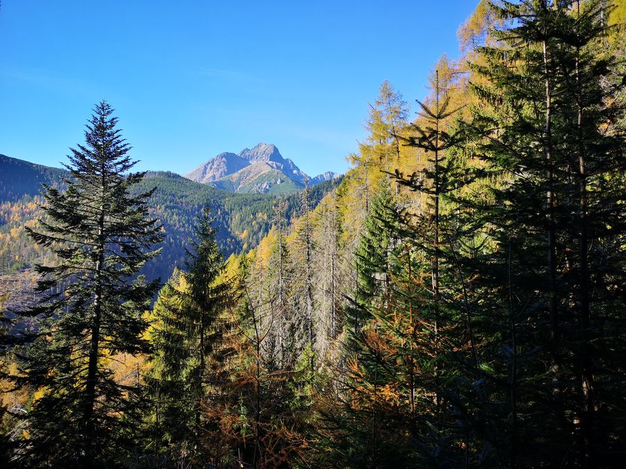 vyhlad na Tatranske stity