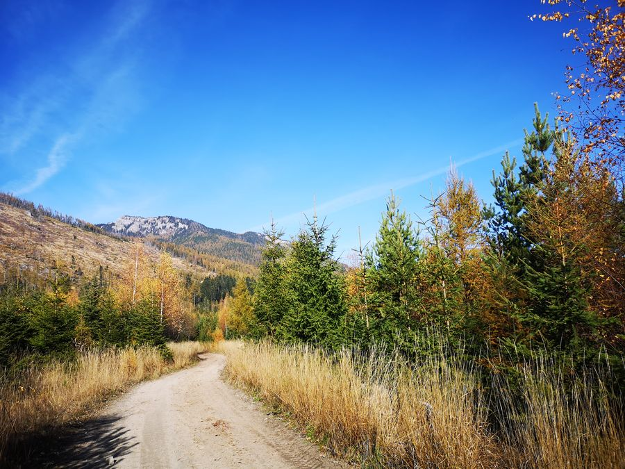 cestou do Kezmarskych Zlabov