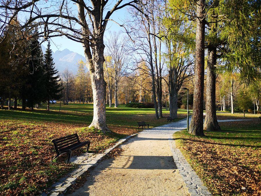 Lomnicky park