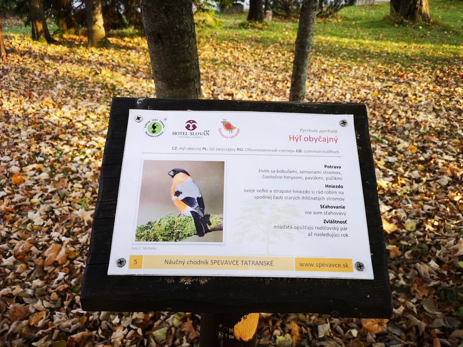 Lomnicky park naucny chodnik Spevavce Tatranske