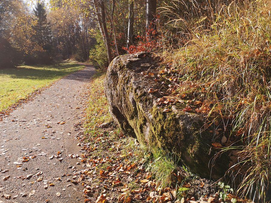 prechadzka z Tatranskej Lomnice do Tatranskej Lesnej