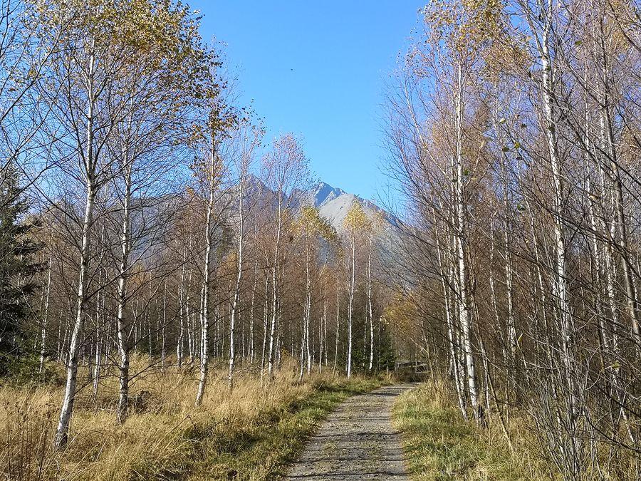 Vysoke Tatry pri prechadzke do Starej Lesnej