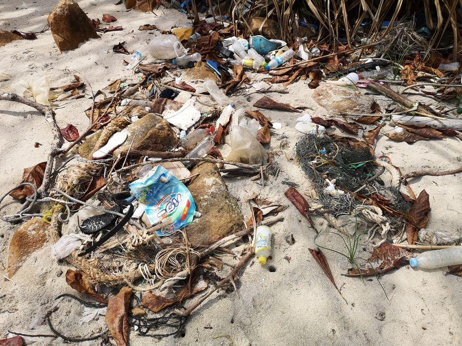 plasty na plazi