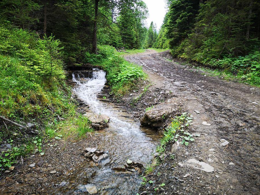 turisticky chodnik na Jezerske jazero vedie vedla potocika