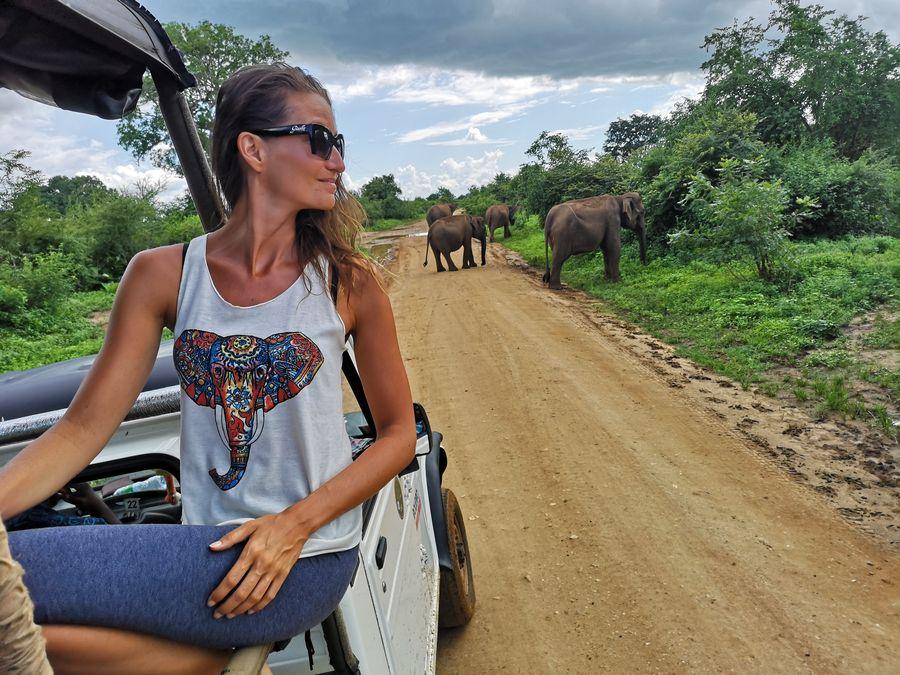 sledujem slony na Sri Lanke