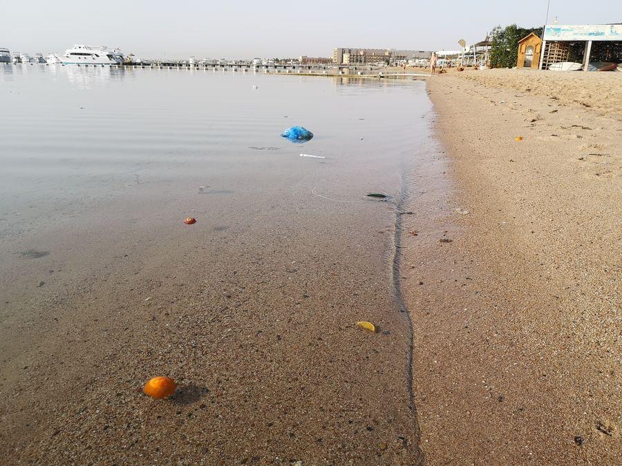 nevyhody Egypta - odpad na plazi