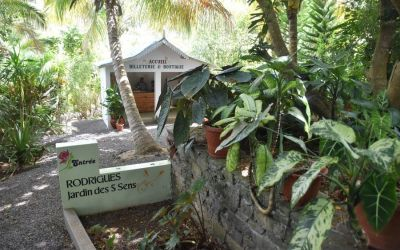 Botanical Garden Jardin Des 5 Sens Rodrigues Top Things To Do On Rodrigues Island Mauritius (25)