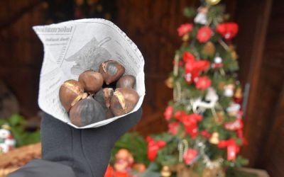 Christmas Market Cheb Vanocni Trhy Cheb Things To Do In Cheb Czech Republic 116