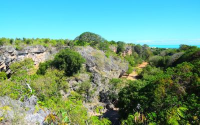 Francois Leguat Reserve Rodrigues Island Top Things To Do On Rodrigues Island Mauritius (132)