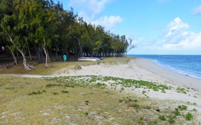 Graviers Beach Rodrigues Island Top Things To Do On Rodrigues Island Mauritius (60)