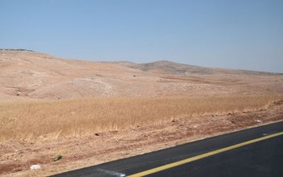 Jordan Valley Close To Jericho West Bank Palestine (28)