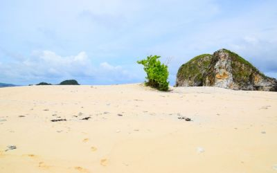 Lang Aw Coron Philippines (4)