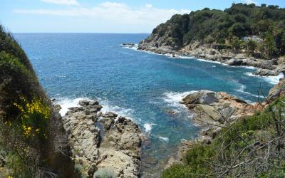 Lloret De Mar Coastal Walk To Fenals (8)