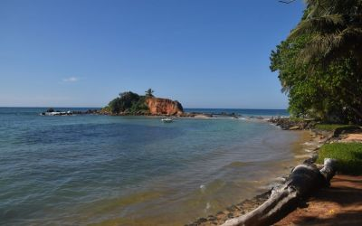 Mirissa Best Beaches In Southern Sri Lanka (4)
