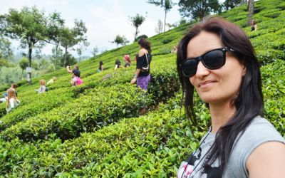 Munnar Tea Plantations And Other Landmarks (12)