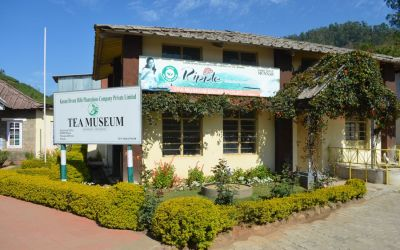 Munnar Tea Plantations And Other Landmarks (56)