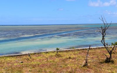 Oyster Bay Rodrigues Island Top Things To Do On Rodrigues Island Mauritius (72)