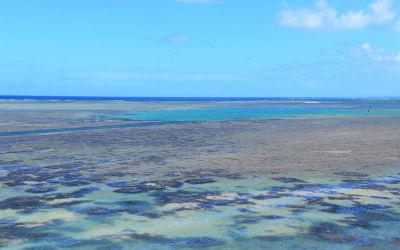 Oyster Bay Rodrigues Island Top Things To Do On Rodrigues Island Mauritius (73)