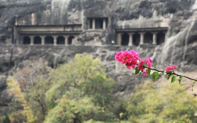 UNESCO Ajanta Caves Deccan Odyssey Luxury Train (38)