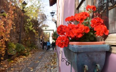 What To Do In Sighisoara Romania (37)