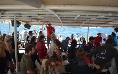 Catamaran Sailing Lloret De Mar (3)