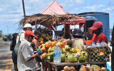 Coconuts Port Mathurin Rodrigues Island Mauritius (17)
