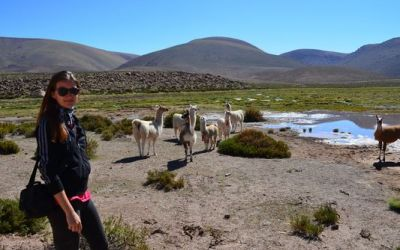 crazy-sexy-fun-traveler-with-llamas-in-the-andes