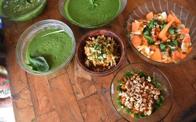 rawfood-course3