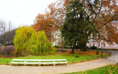 Things To Do In Karlovy Vary Czech Republic 117