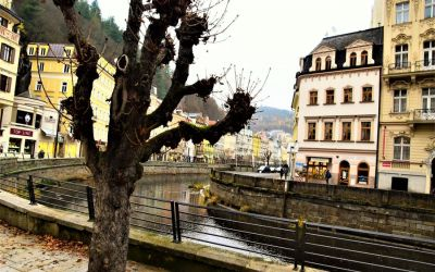 Things To Do In Karlovy Vary Czech Republic 238