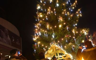 Things To Do In Karlovy Vary Czech Republic Christmas Market And Christmas Tree 167