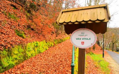 Things To Do In Karlovy Vary Czech Republic Lazenske Lesy Spa Forest 39