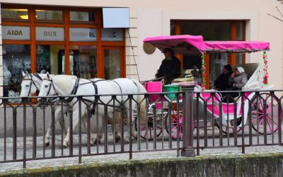 Things To Do In Karlovy Vary Czech Republic Horse Carriage 264