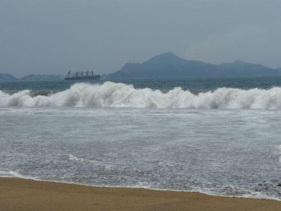 Manzanillo coast