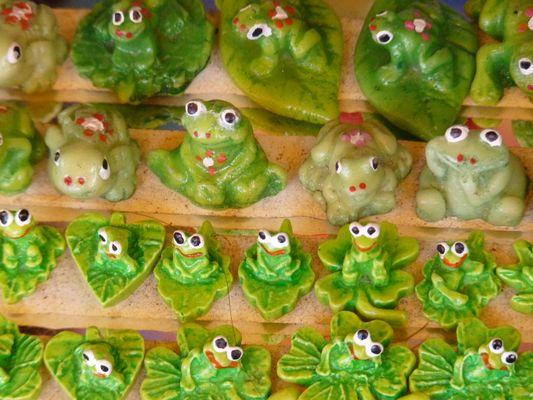 el Parral frogs