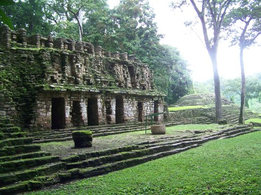 a Yaxchilan temple