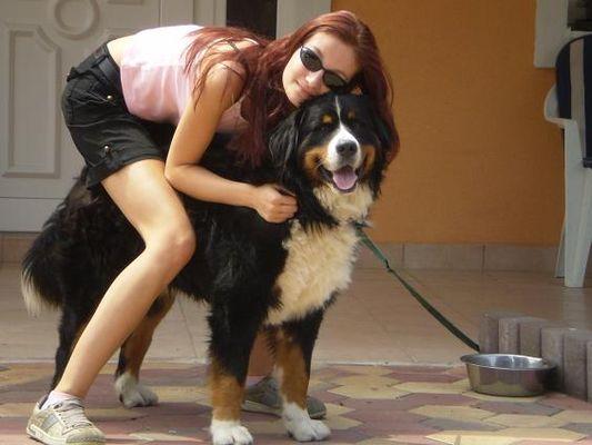crazy sexy fun traveler with her Mountain Bernese dog Cezar