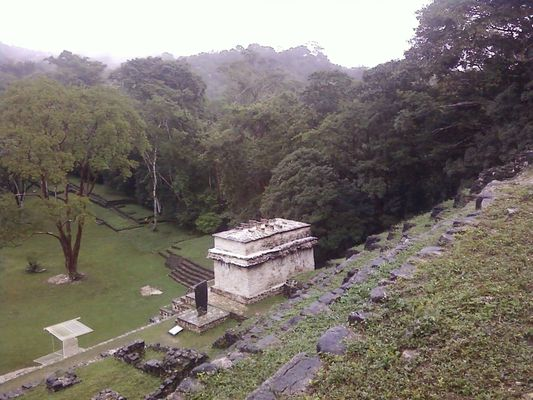 view of Bonampak from the up