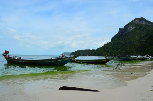 Koh Wua Talap beach in Angthong Marine National Park